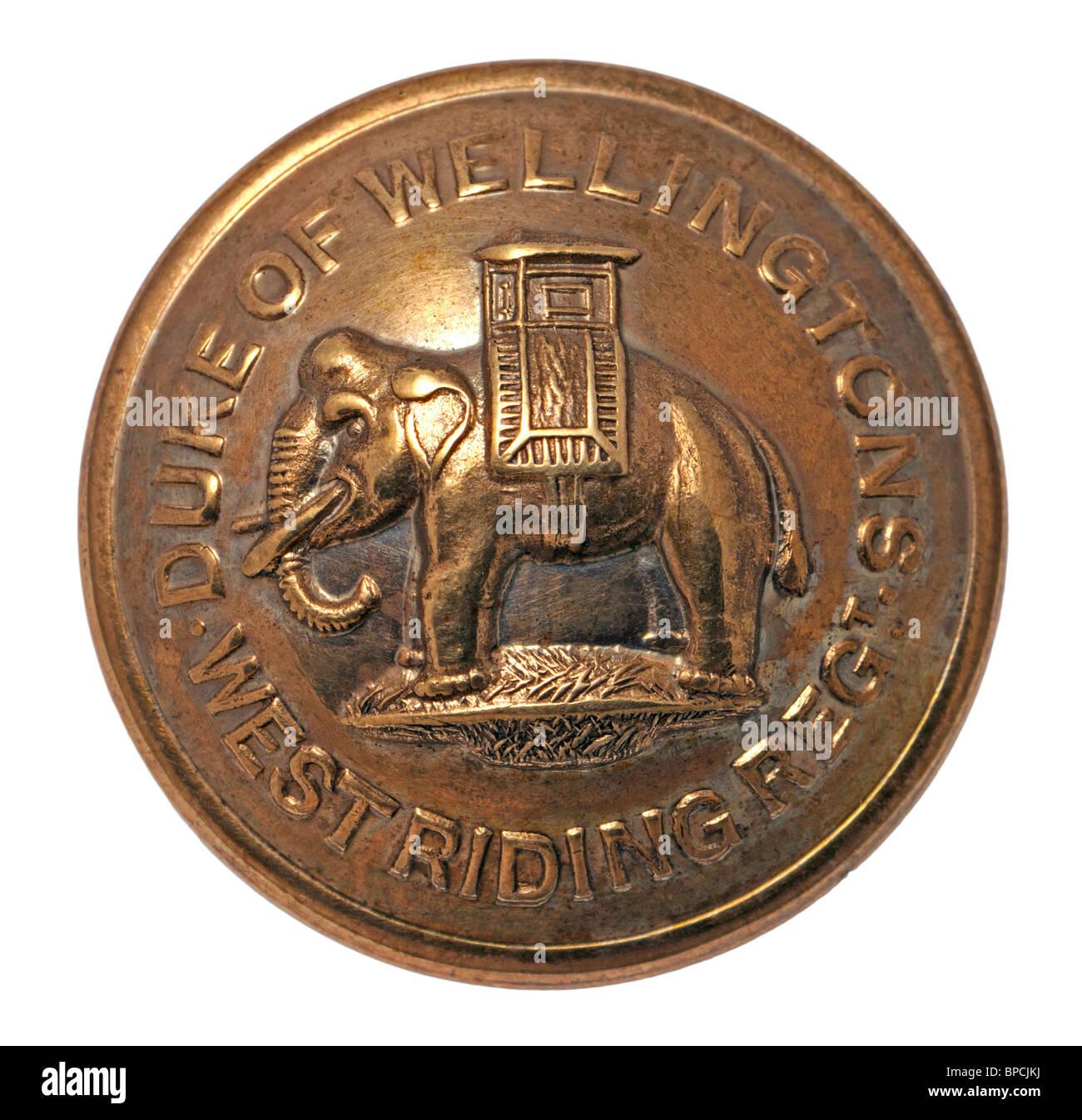 British Military Brass Button - Duke of Wellington West Riding Regiment - Stock Image