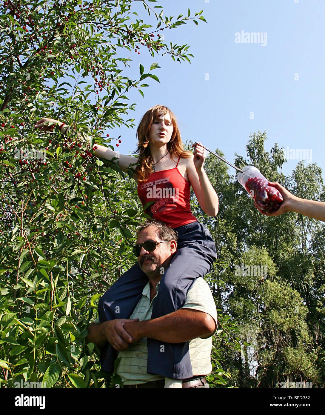 Cherry picking - Stock Image