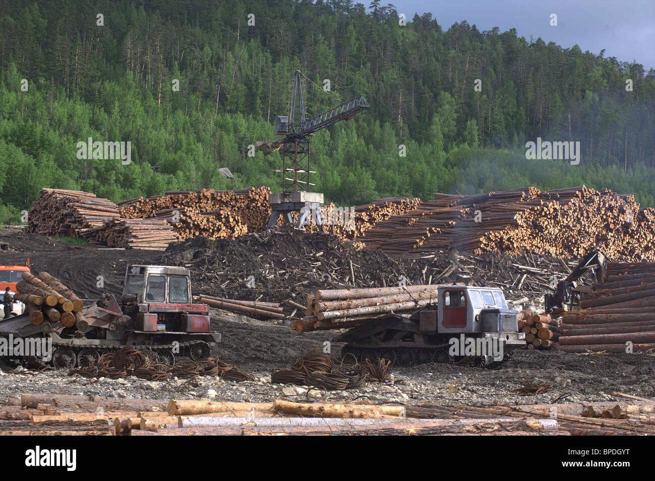Floating Logs Down River Angara - Stock Image