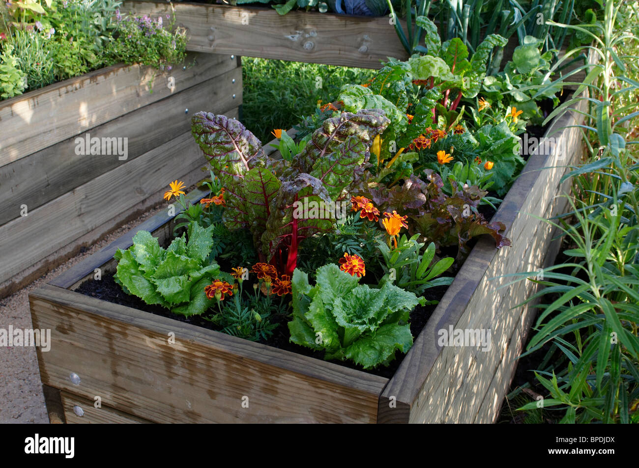 Small urban vegetable garden in enclosed raised beds stock for Portable vegetable garden