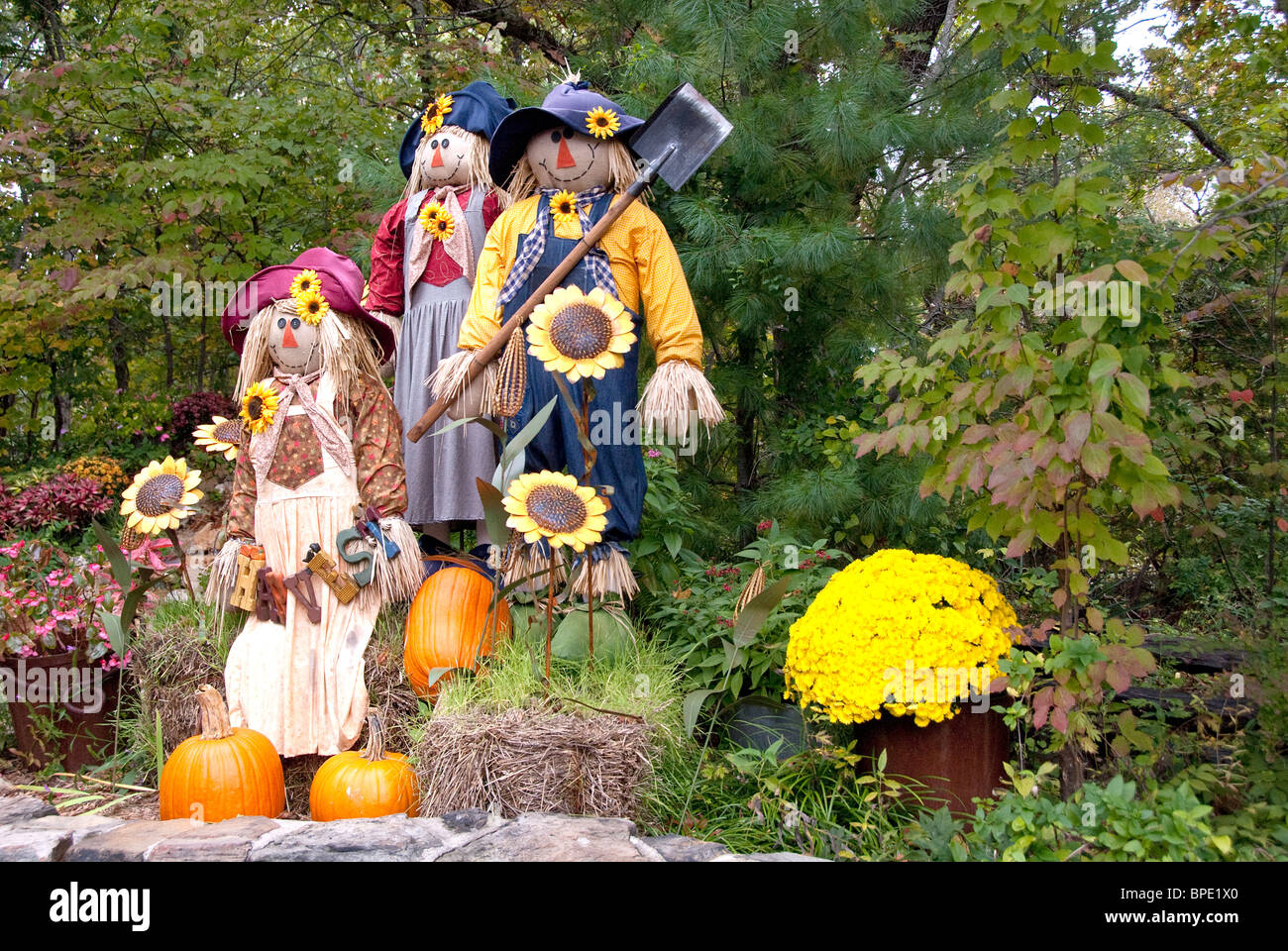Scarecrows And Pumpkins Stock Photos Amp Scarecrows And