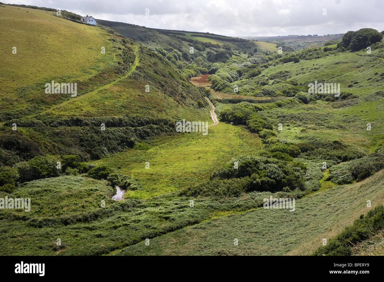 Speke's Mill valley from Swansford Hill looking towards Docton Mill on the South West coast path in North Devon - Stock Image