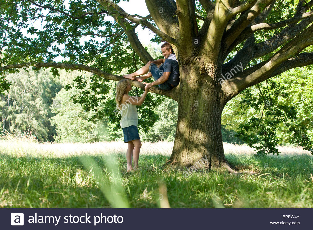 A young woman talking to her boyfriend up a tree - Stock Image