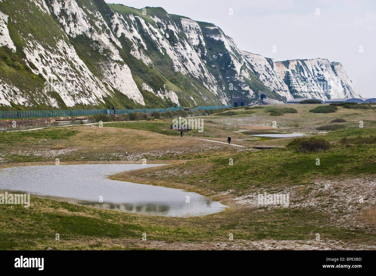 Samphire Hoe and the white cliffs near Folkestone and Dover on the Kent coast - Stock Image