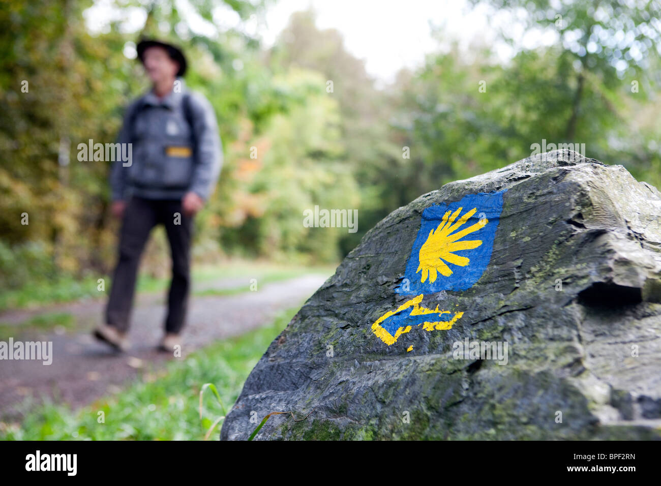 a walker on the Camino de Santiago trail - Stock Image
