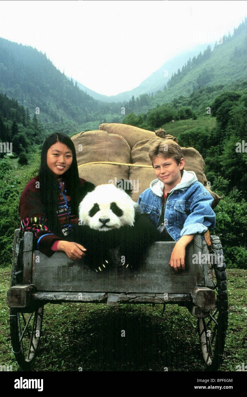 Kid Movies Bear