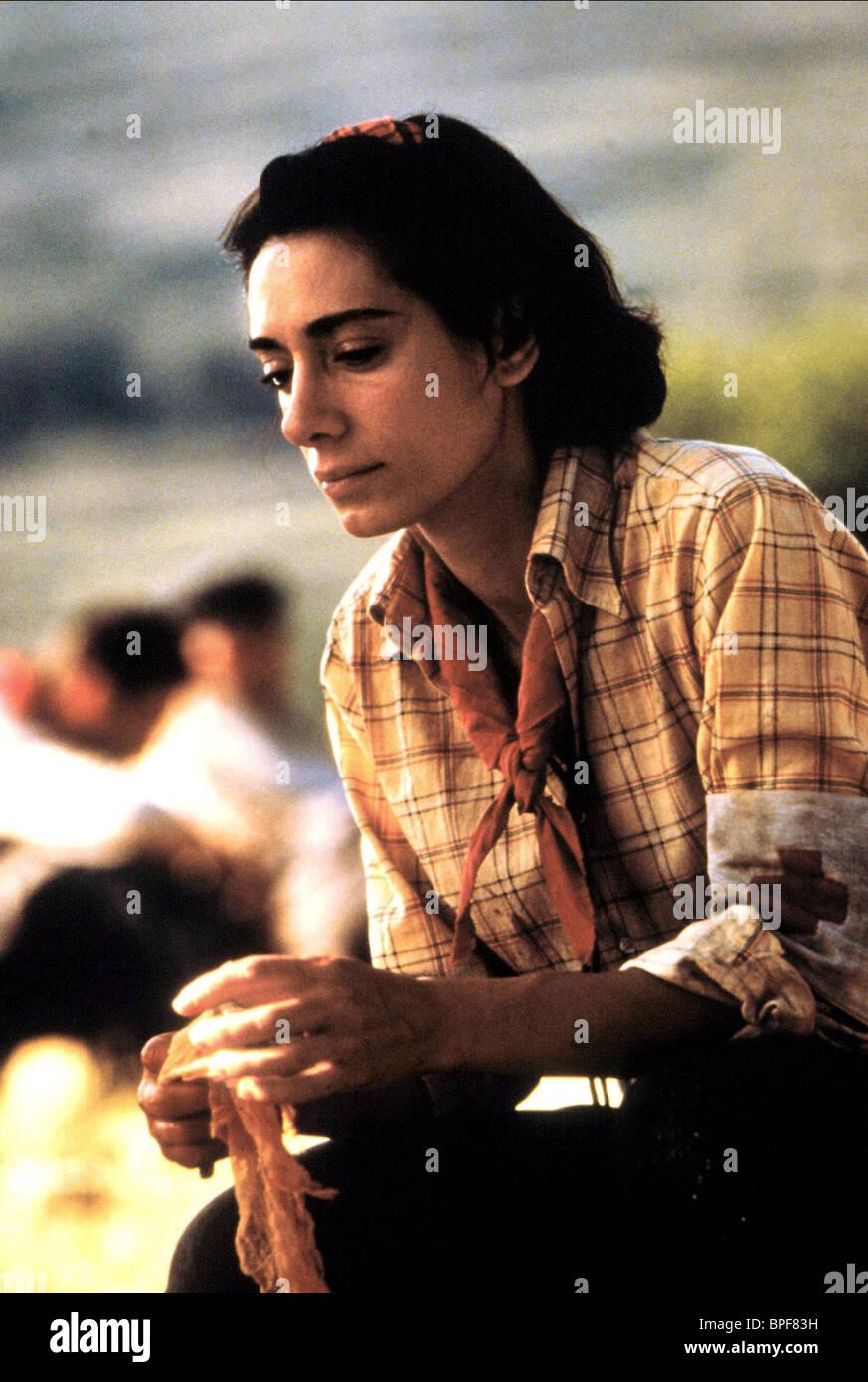 ROSANA PASTOR LAND AND FREEDOM (1995) - Stock Image