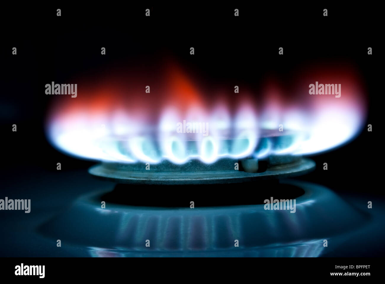 Flame of A gas Cooker - Stock Image