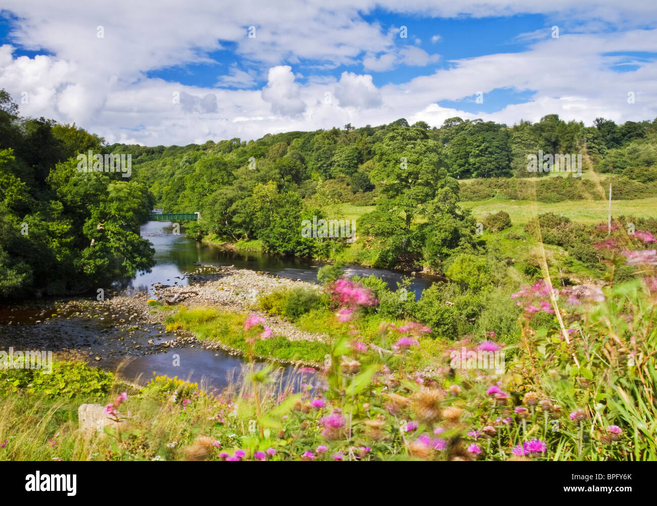 The River Tees near the village of Cotherstone, Teesdale, County Durham, England - Stock Image