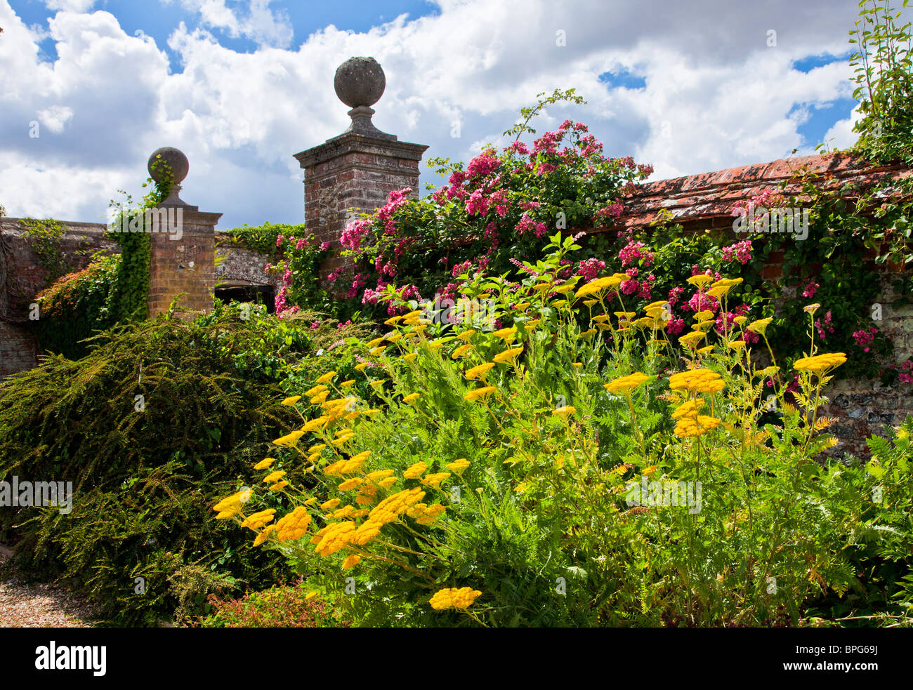 Herbaceous Perennial Border Of Summer Flowers In A Walled English