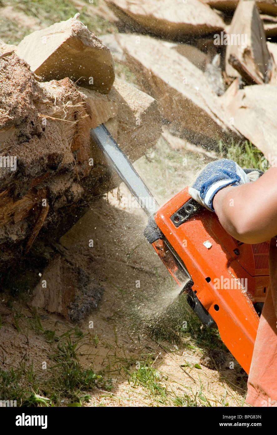 Worker Using Chain Saw to Cut out Wood Sculpture Stock Photo