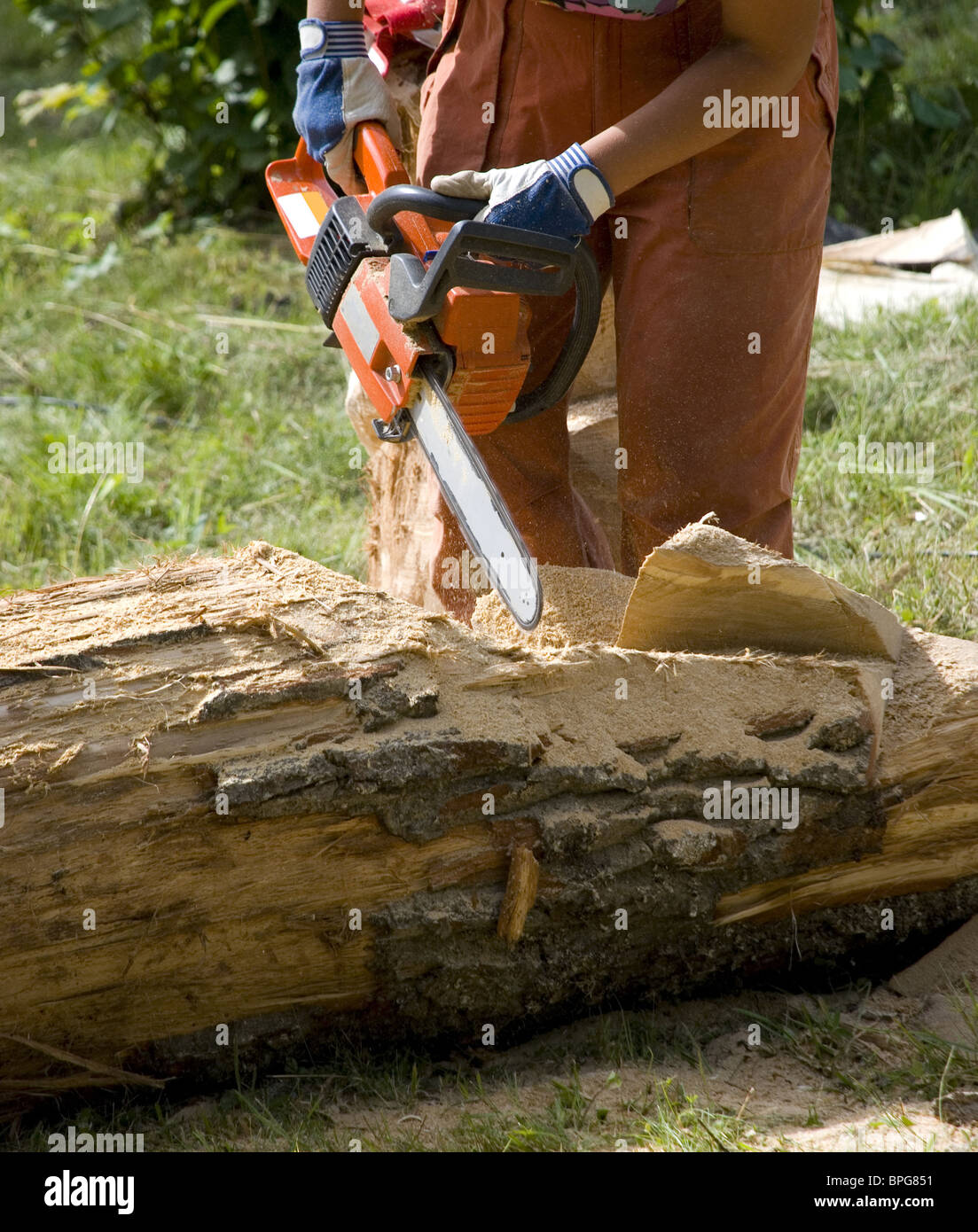 Worker using chain saw to cut out wood sculpture - Stock Image