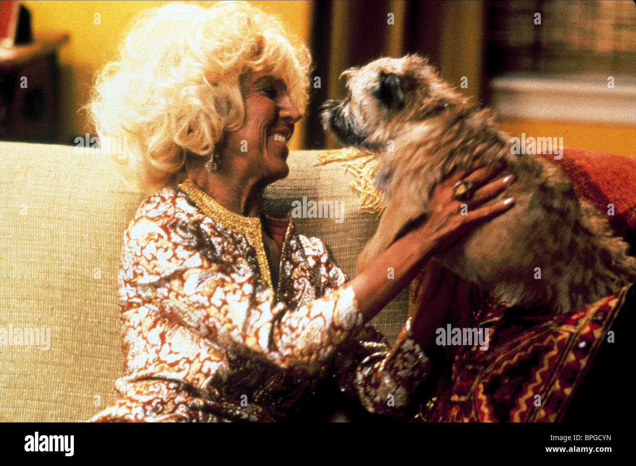 LIN SHAYE, DOG, THERE'S SOMETHING ABOUT MARY, 1998 - Stock Image