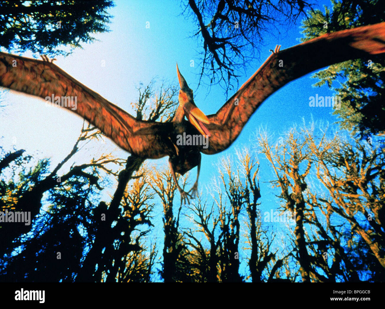 PTERANODON T-REX: BACK TO THE CRETACEOUS (1998) - Stock Image