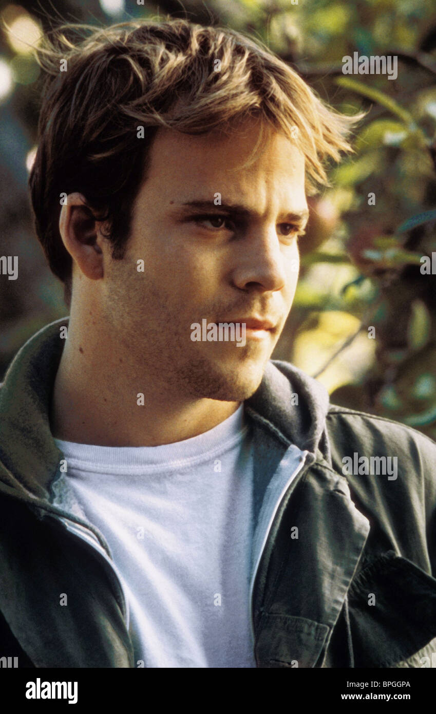STEPHEN DORFF EARTHLY POSSESSIONS (1999) - Stock Image