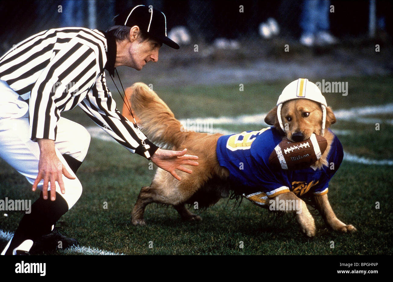 REFEREE & BUDDY AIR BUD: GOLDEN RECEIVER; AIR BUD 2 (1998) - Stock Image