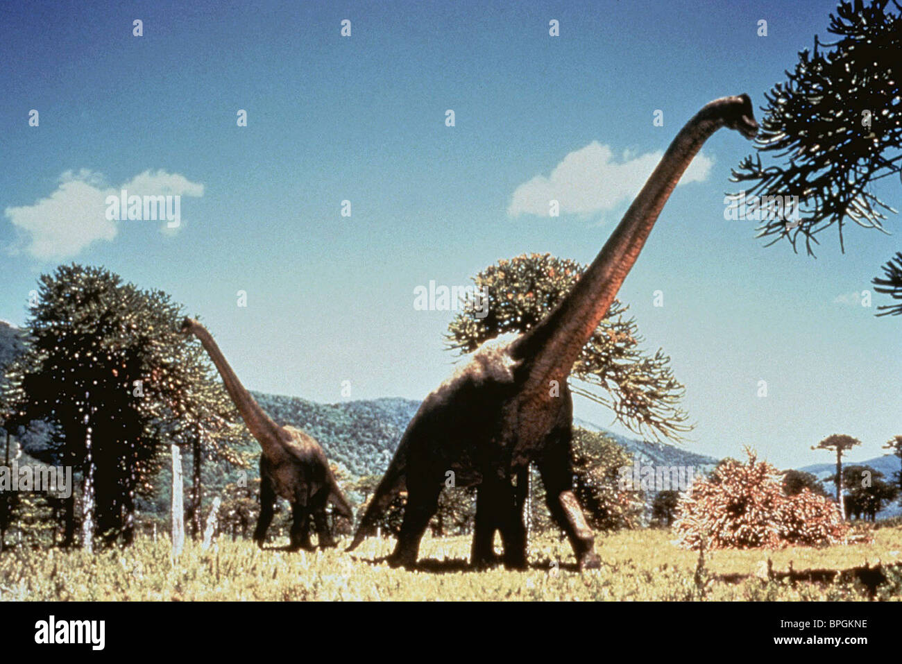 DIPLODOCUS WALKING WITH DINOSAURS (1999) - Stock Image