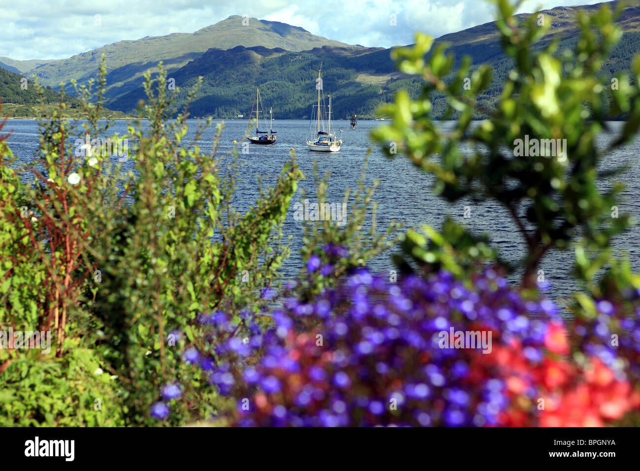 Loch Goil from Carrick Castle with yachts anchored during the summer Stock Photo