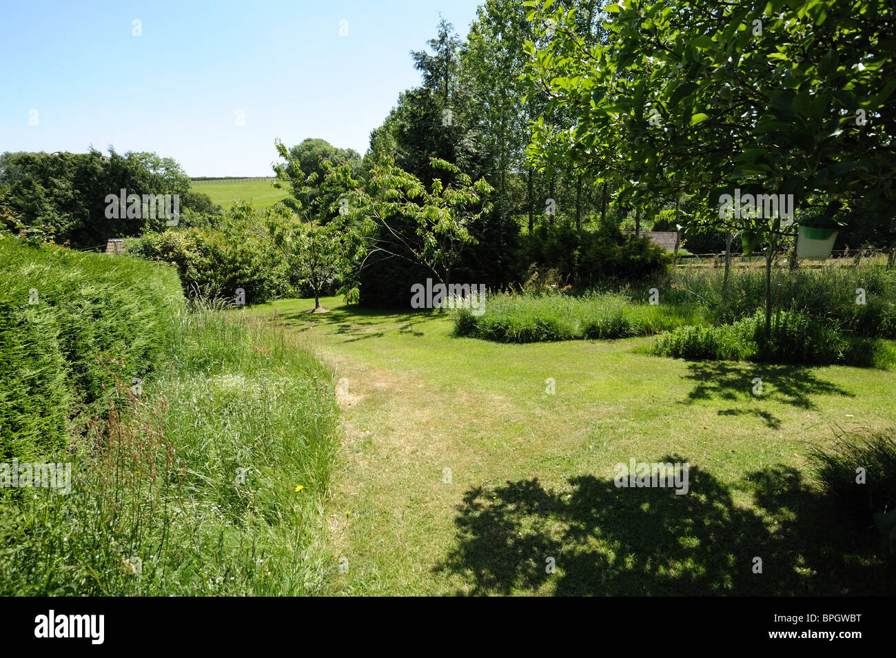 Lawn paths cut through long grass to encourage wildlife and pest predators in a country garden - Stock Image