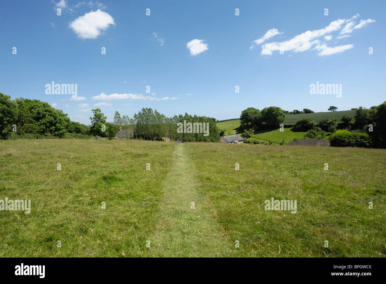 Rough grazed pasture with a path cut through it, fine summer day in June, Devon Stock Photo