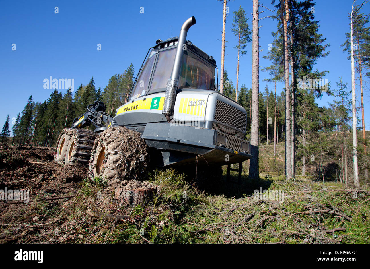 Ponsse Beaver forest harvester at clear-cutting site , Finland - Stock Image
