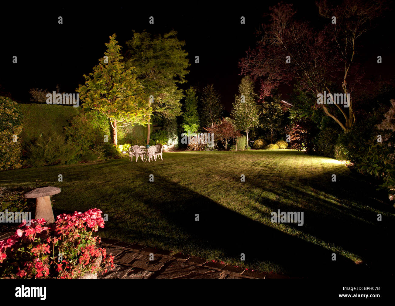 Well tended garden and flowers floodlit at night - Stock Image