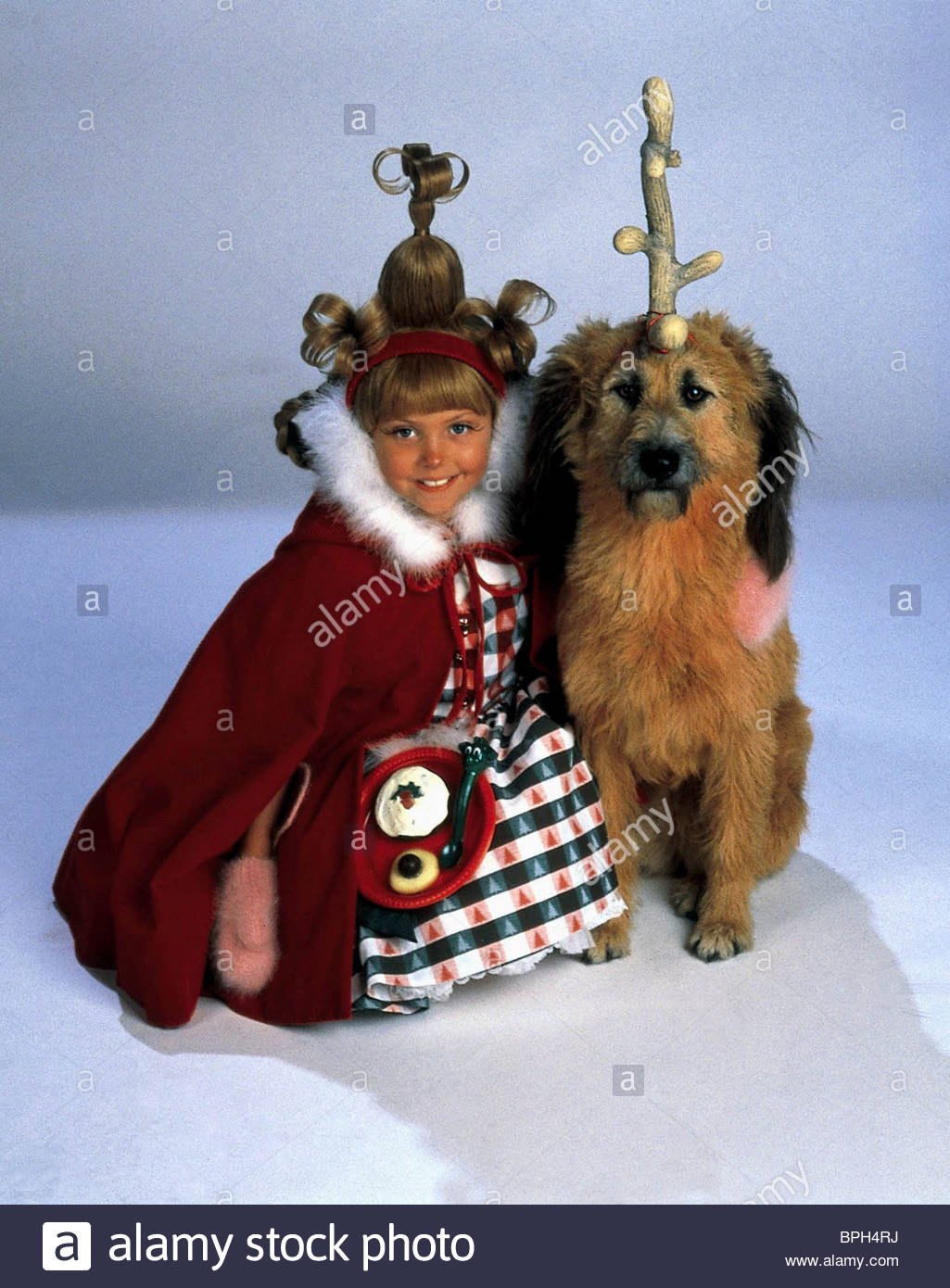 taylor momsen max the dog how the grinch stole christmas 2000 stock