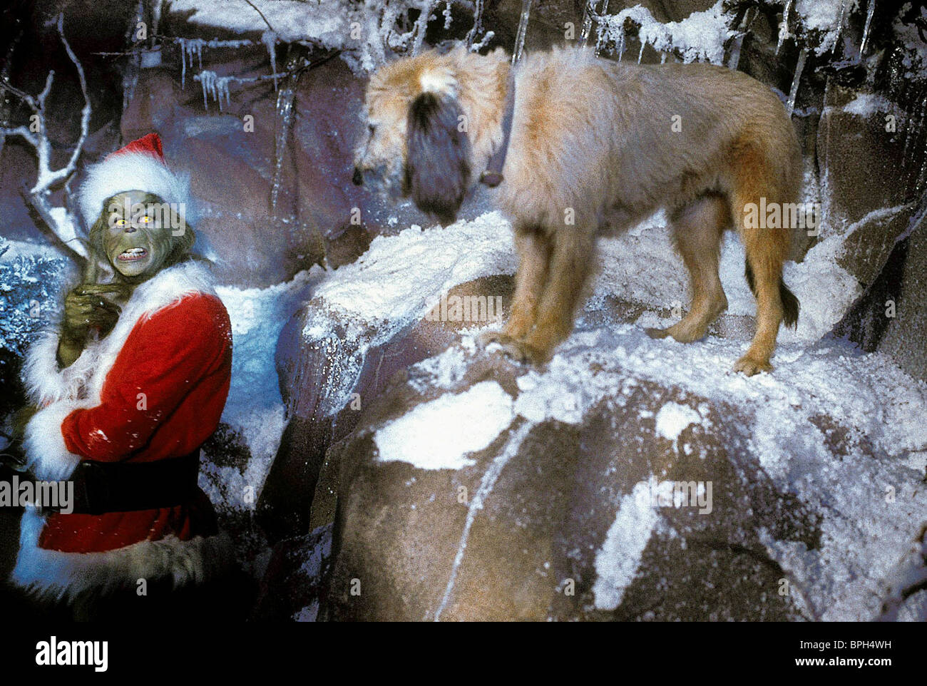 JIM CARREY & MAX THE DOG HOW THE GRINCH STOLE CHRISTMAS ...