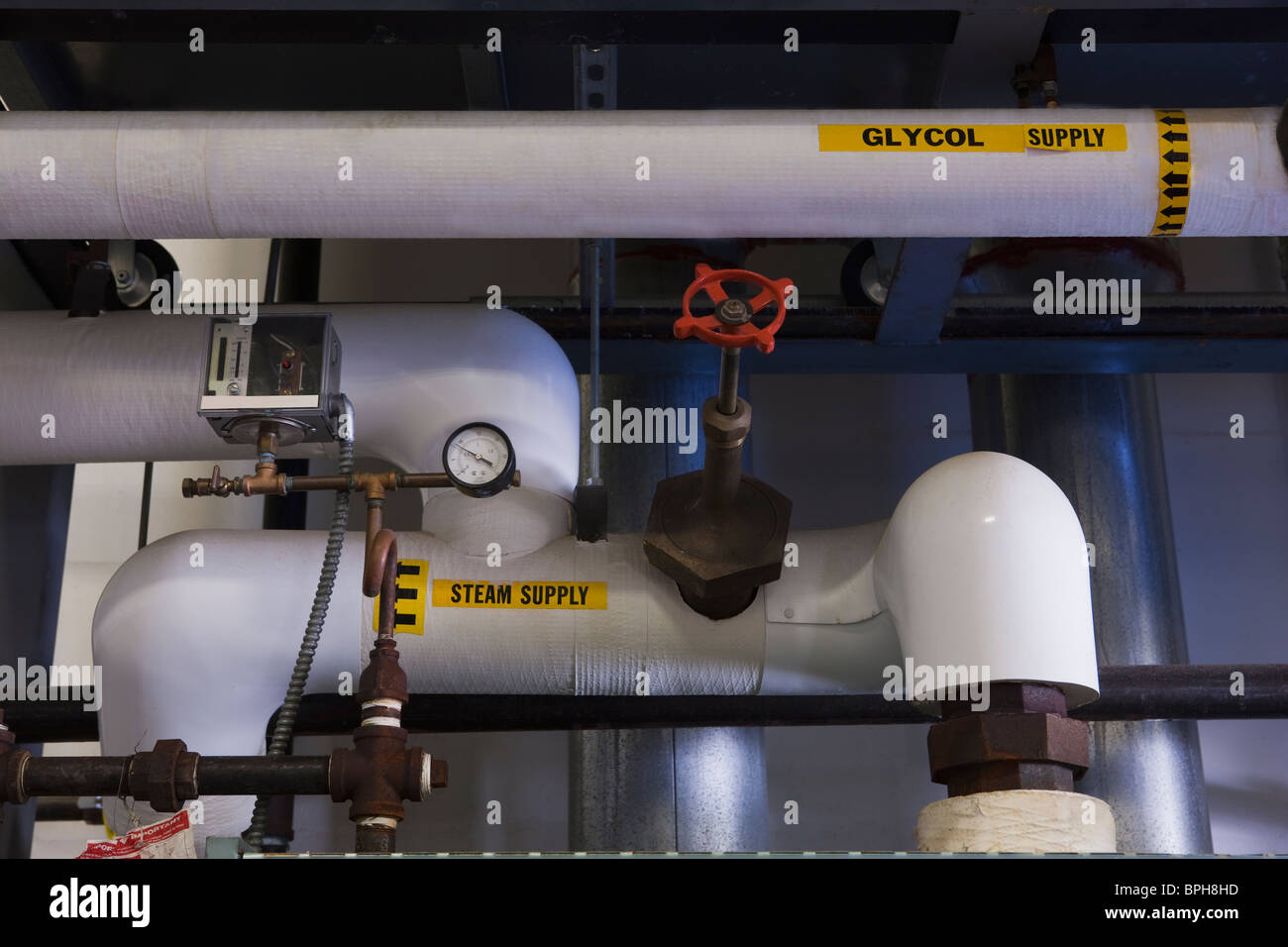 Glycol and steam supply pipelines in a brewery - Stock Image