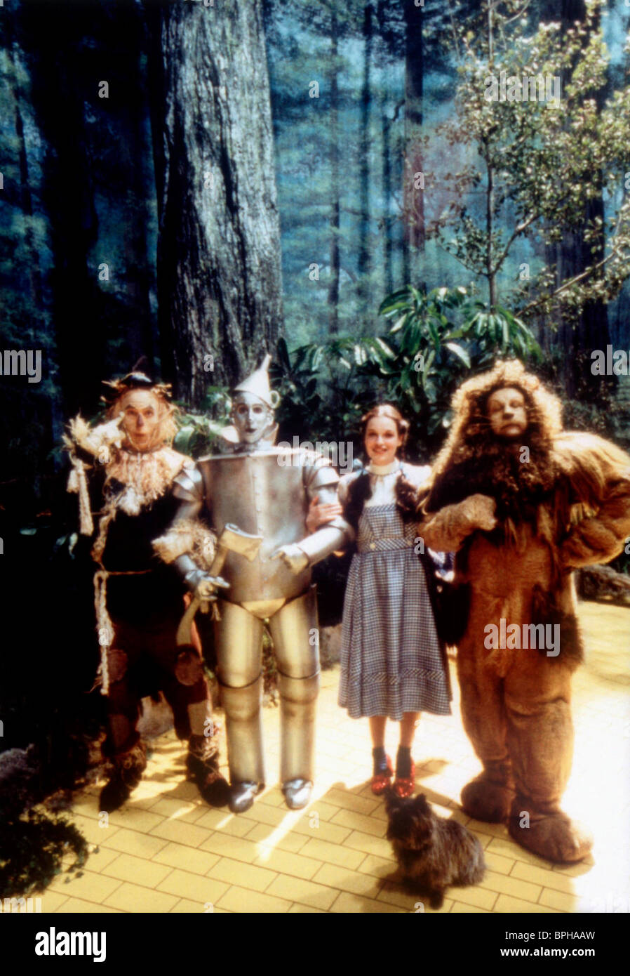 Judy Garland Life With Judy Garland Me And My Shadows Wizard Of Oz Stock Photo Alamy
