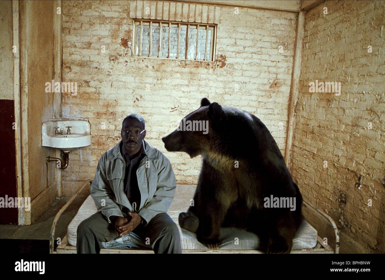 Eddie Murphy Bear Dr Dolittle 2 2001 Stock Photo Alamy