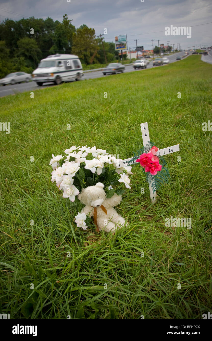 Roadside Memorial Flowers , Car Crash Victim, Delaware, USA - Stock Image