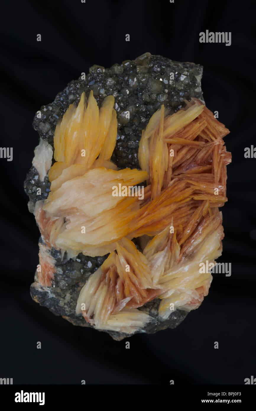 Barite on Cerrusite - Morocco  - Barite (orange) is the major ore of barium (barium sulfate) - Mineral class: sulfates - Stock Image