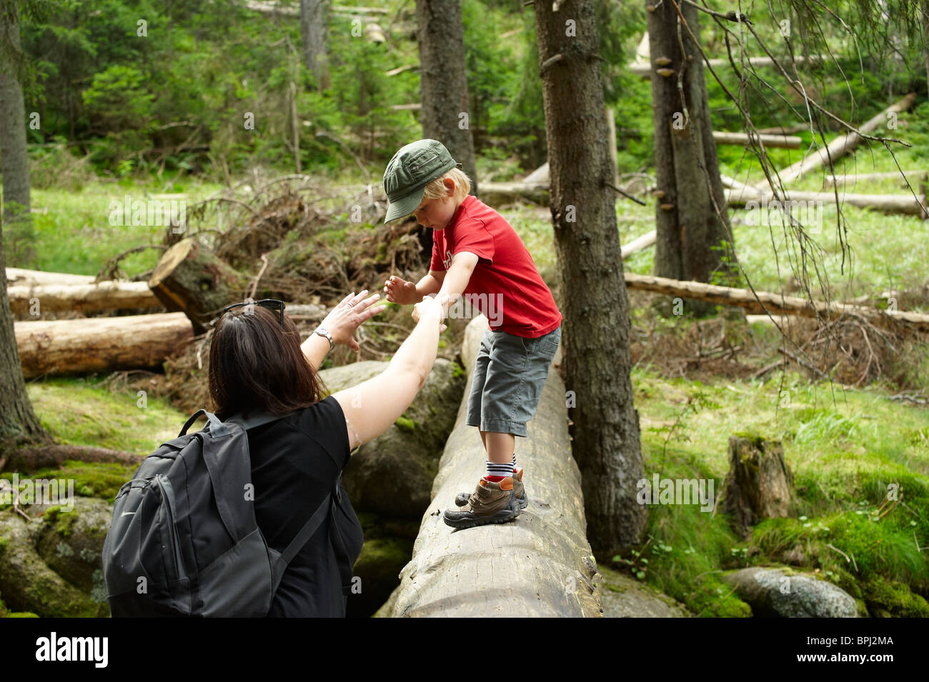 Image of: Falling Down Children Exploring In Forest Mother Helping Son Over Stream National Park Sumava Czech Republic Alamy Funny People Falling Over Stock Photos Funny People Falling Over