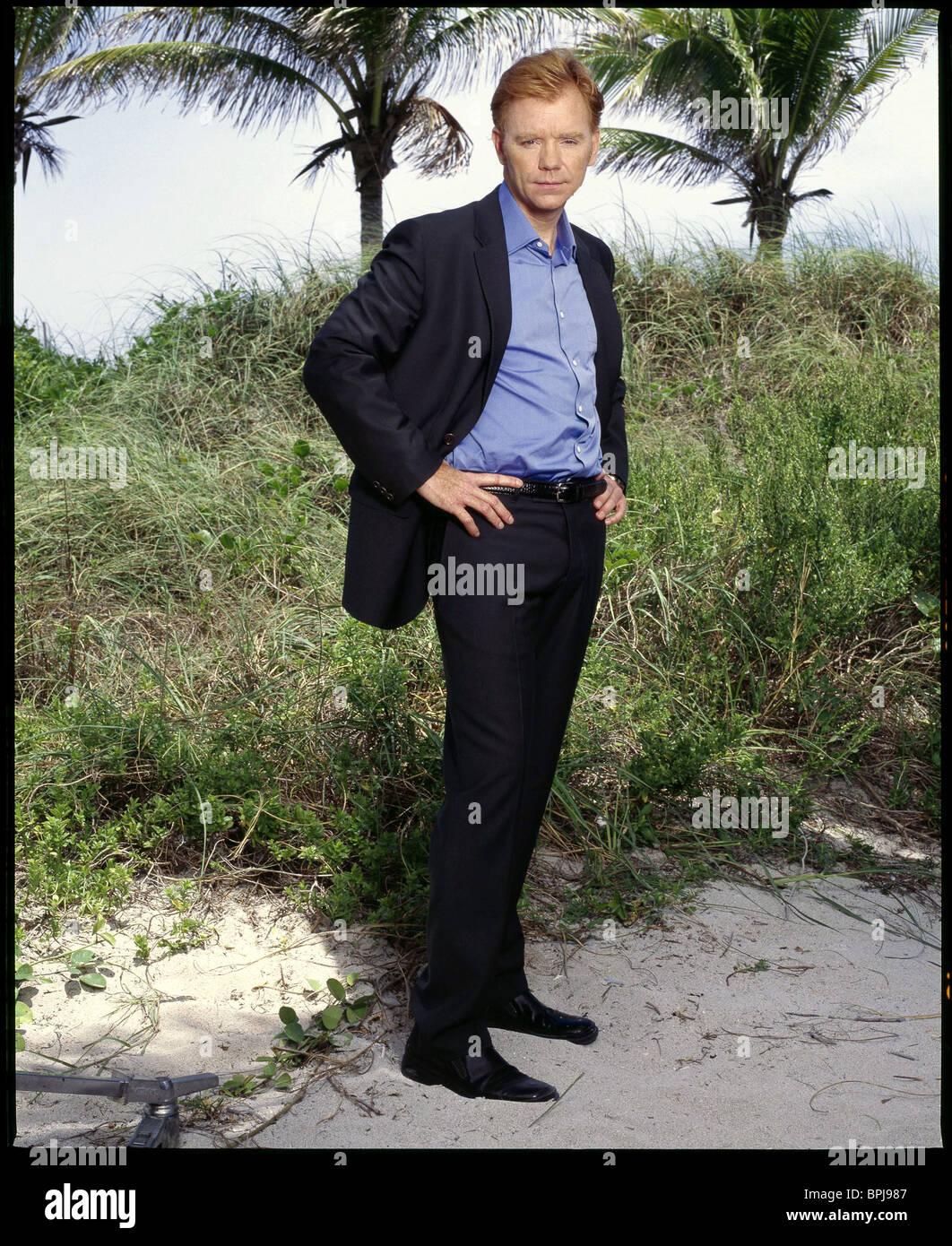 DAVID CARUSO C.S.I.: MIAMI ; CSI MIAMI (2002) Stock Photo