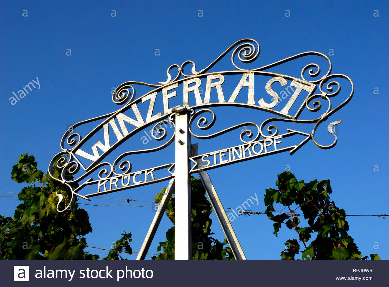 Resting place in a vineyard, Heppenheim, Hesse, Germany - Stock Image
