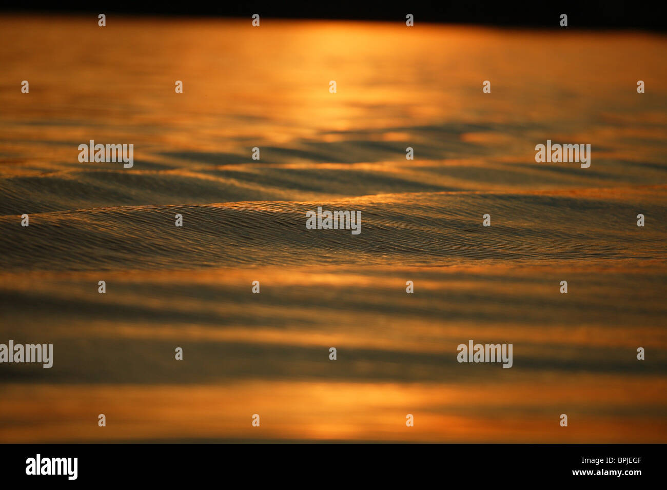 Water surface in the evening light, Lake Chiemsee, Chiemgau, Bavaria, Germany Stock Photo