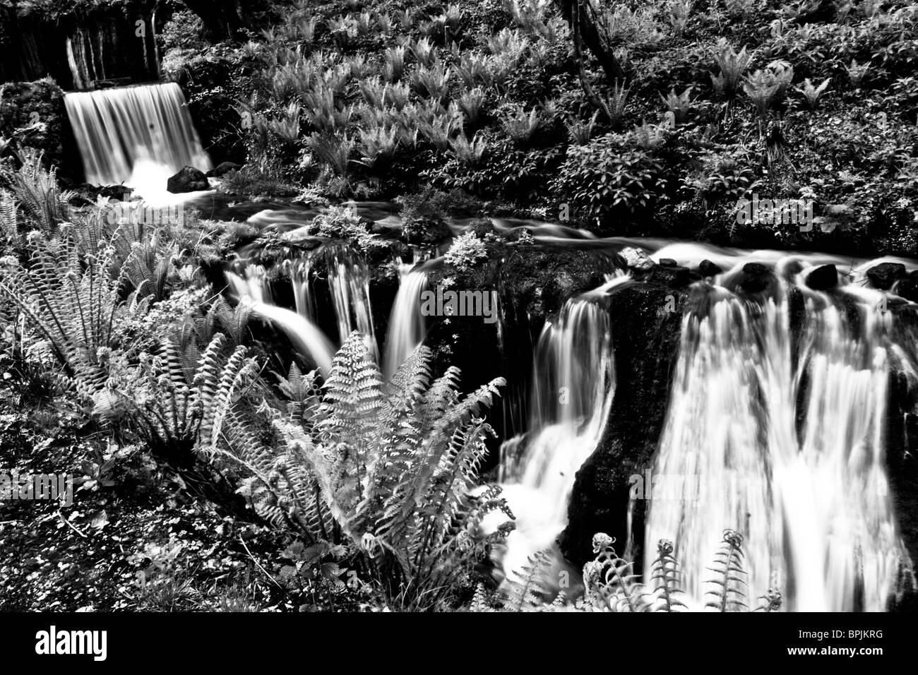 Waterfall pathways - Stock Image