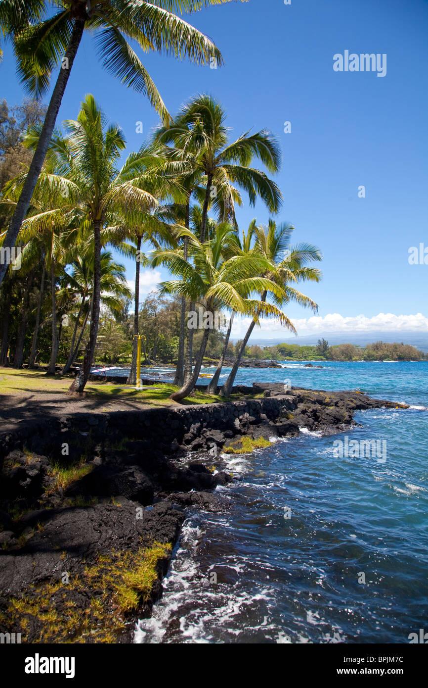 Richardson Ocean Center, leleiwi Beach Park, Hilo, Island of Hawaii - Stock Image