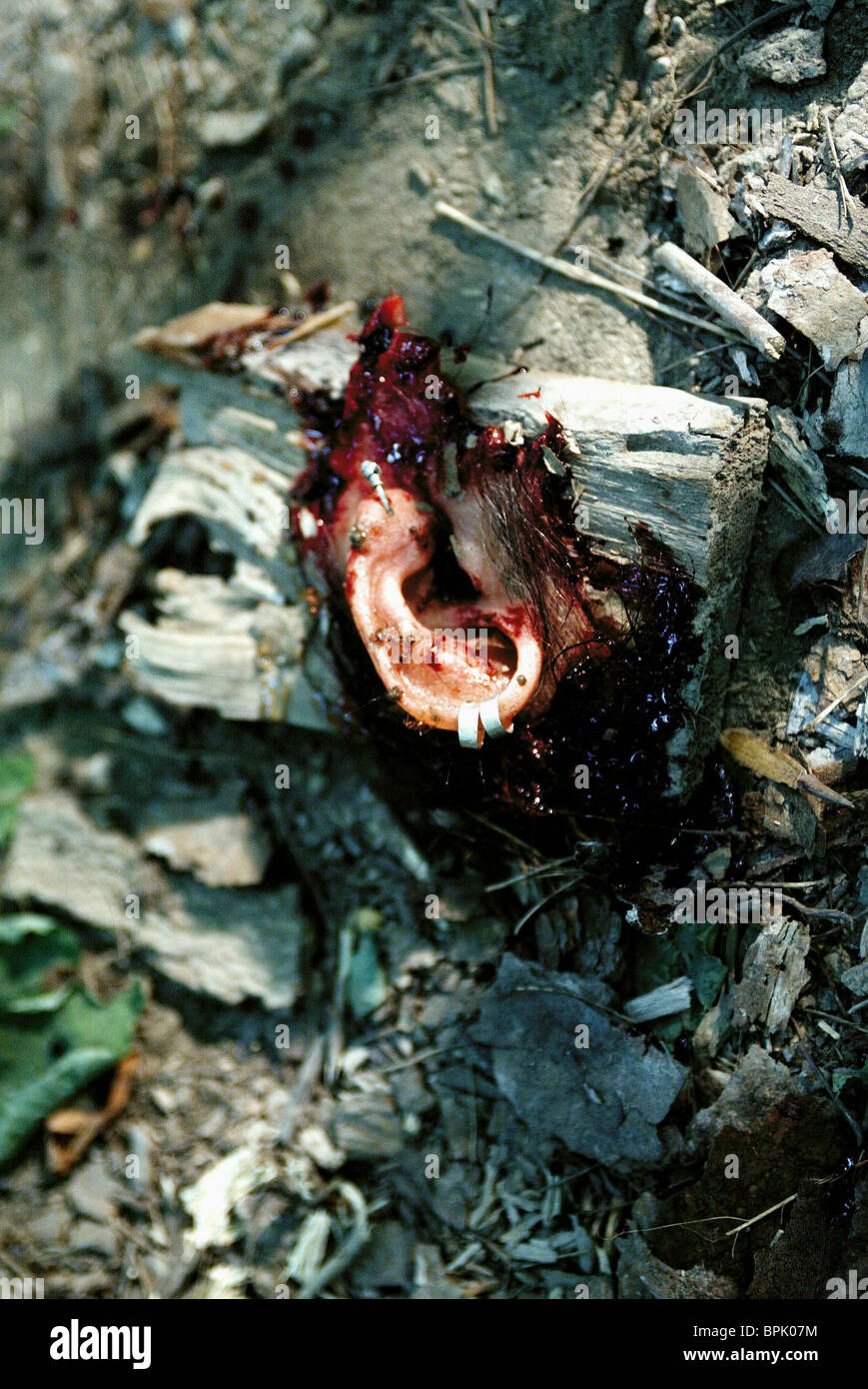 SEVERED EAR WRONG TURN (2003) - Stock Image