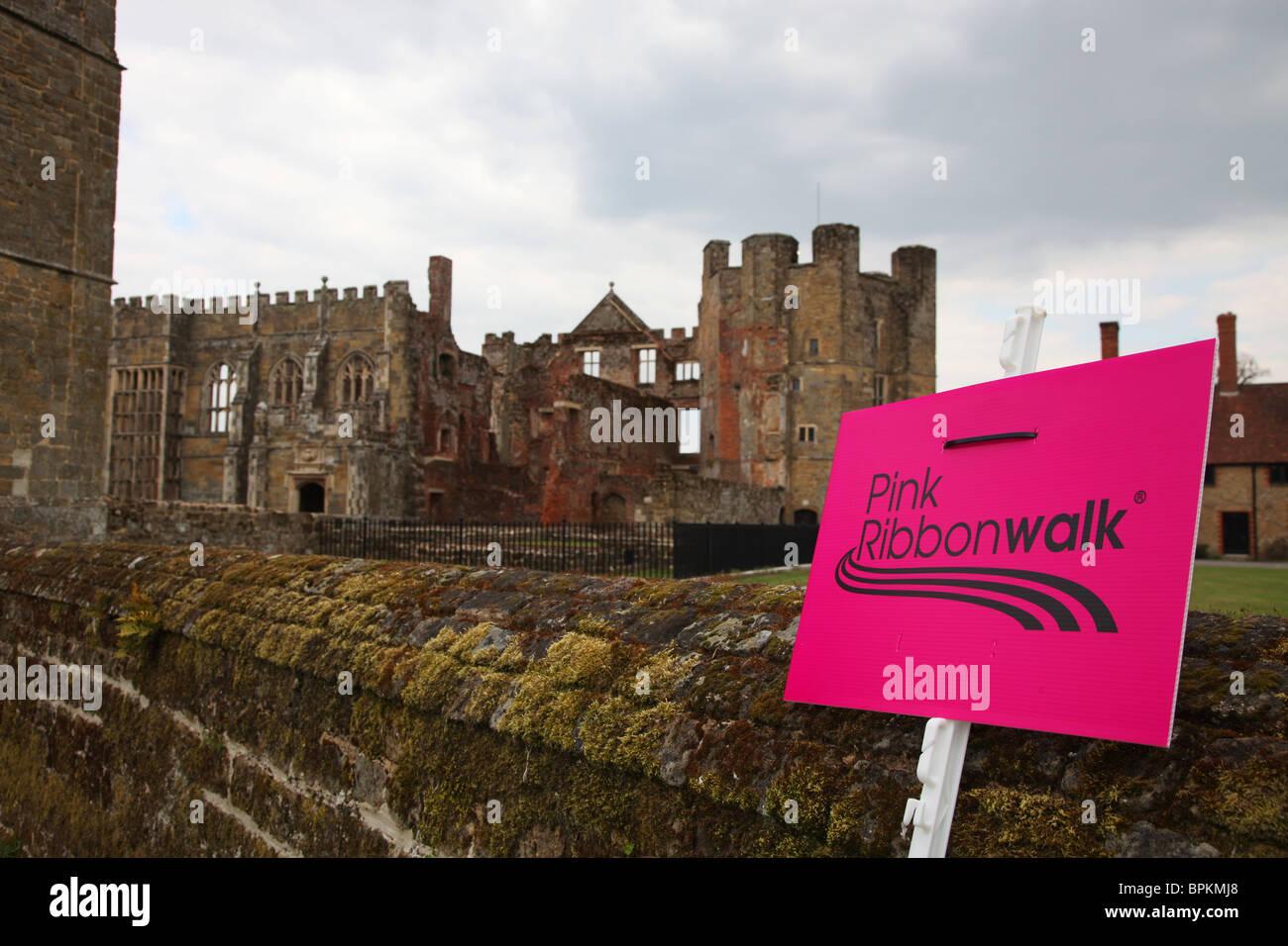 'pink ribbon walk' cowdray castle - Stock Image