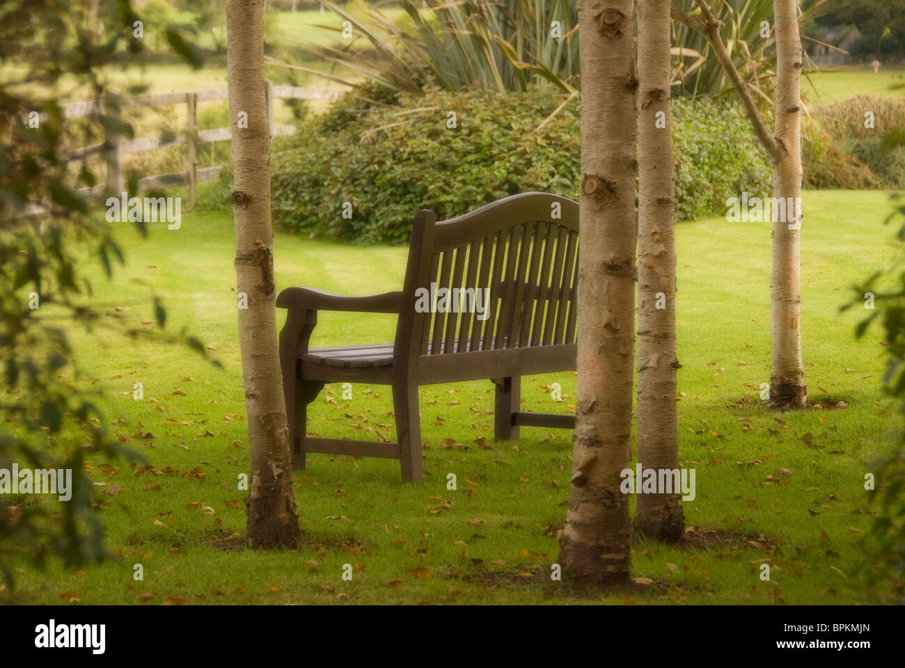 Wooden bench sitting among trees in gardens of old hotel, Ballyvaughan, County Clare, Ireland - Stock Image