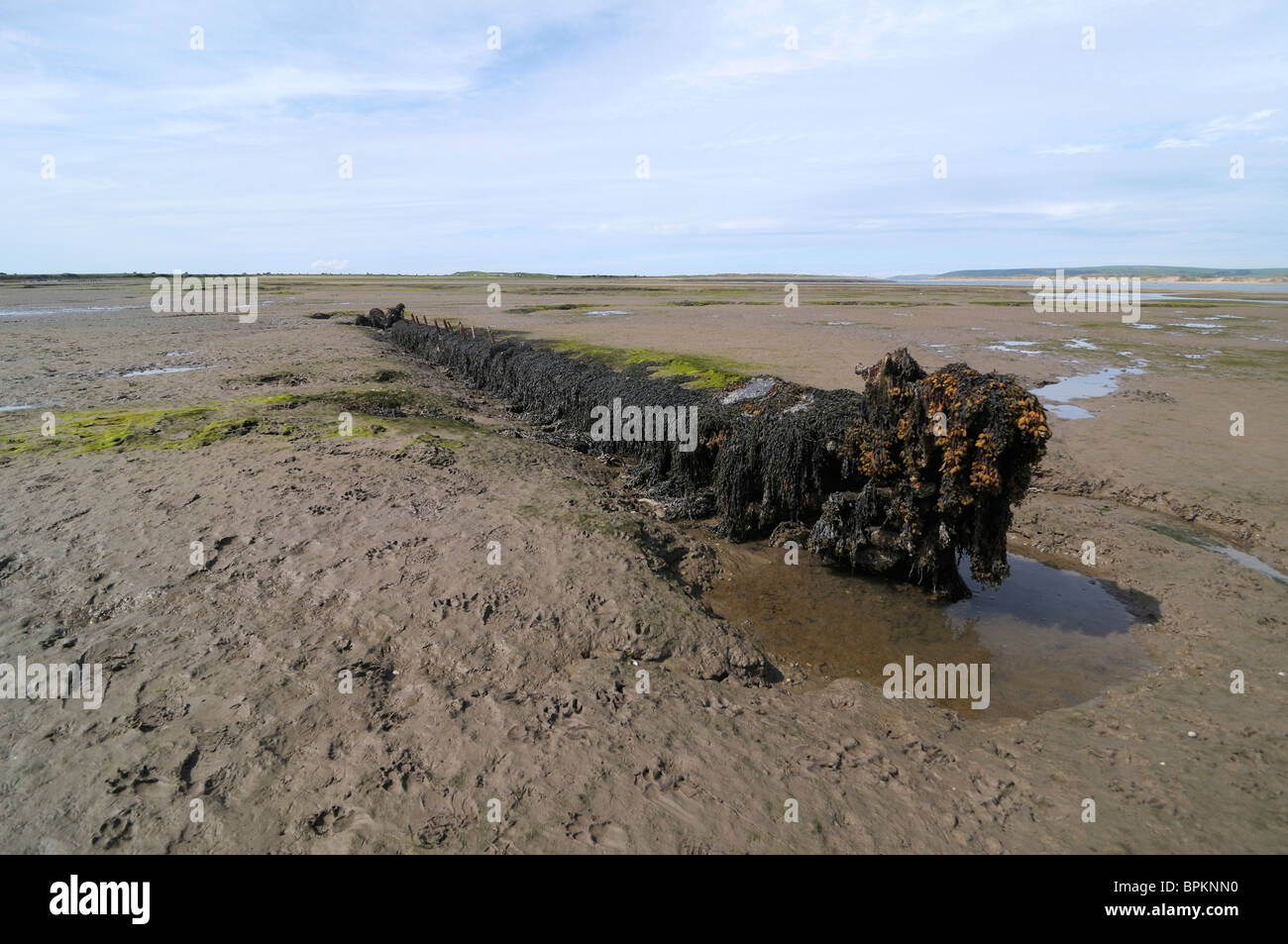 Keel of a wrecked ship, Appledore, Devon, UK - Stock Image