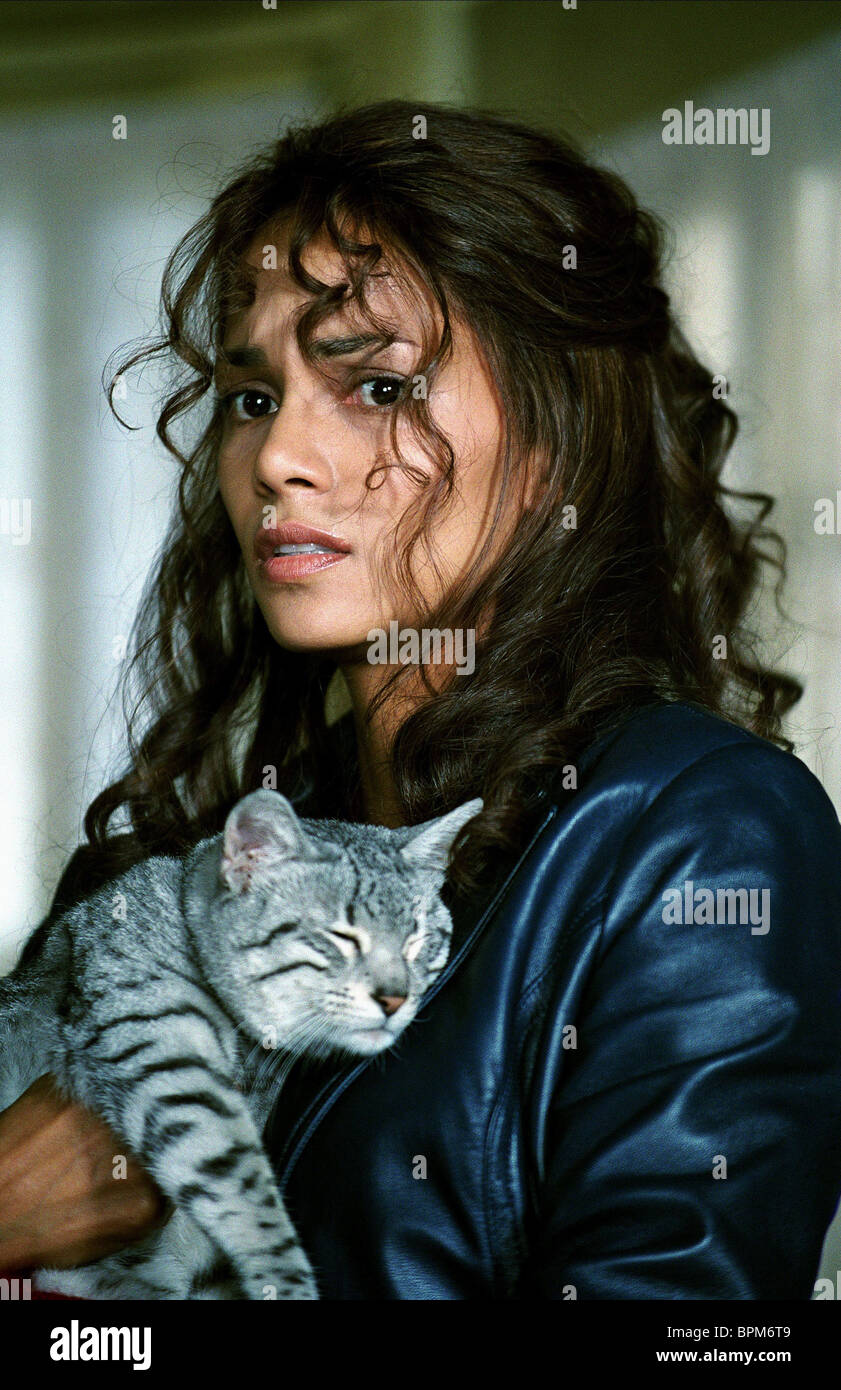 Halle Berry Cat Catwoman 2004 Stock Photo Alamy