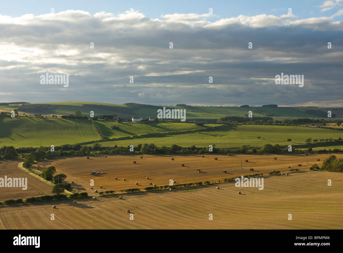 Haymaking near Kirk Yetholm, Scottish Borders, Scotland, UK - Stock Image