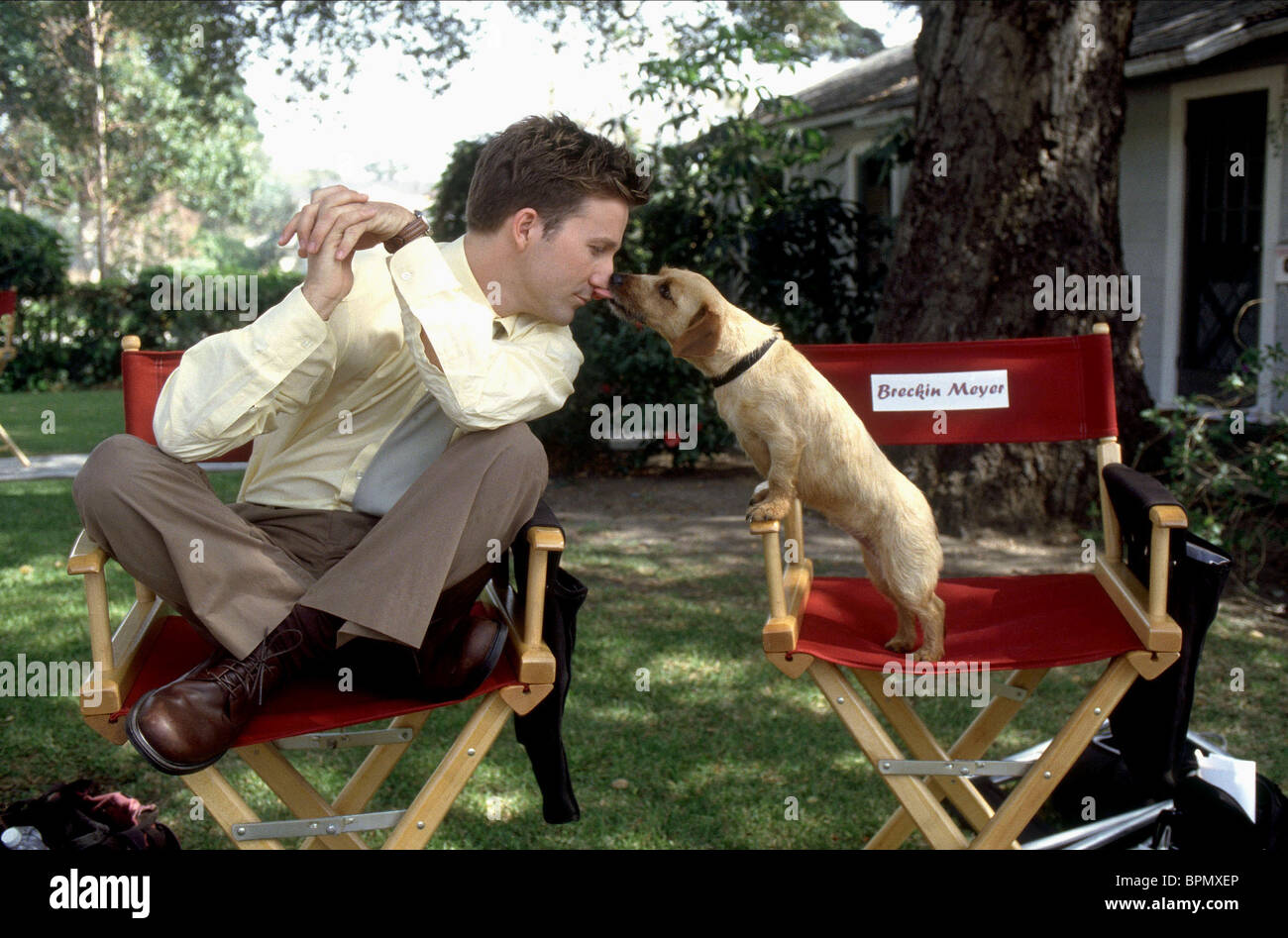 breckin meyer amp odie garfield the movie 2004 stock photo