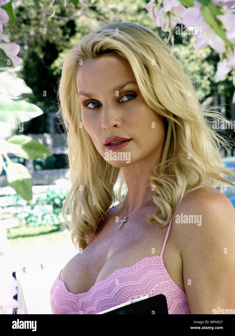 Nicollette Sheridan (born 1963) Nicollette Sheridan (born 1963) new photo