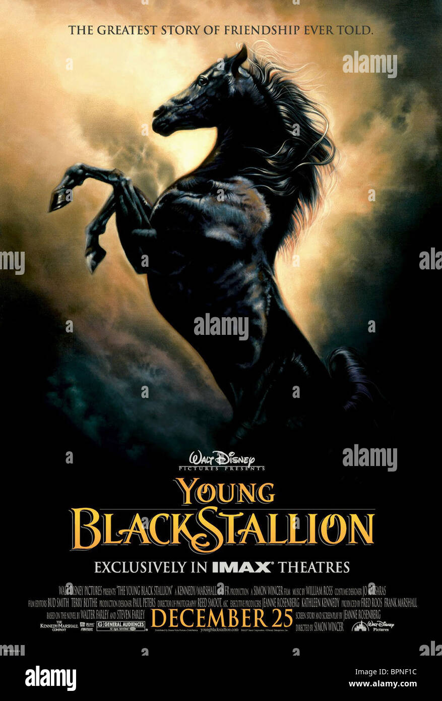 FILM POSTER THE YOUNG BLACK STALLION (2003) - Stock Image