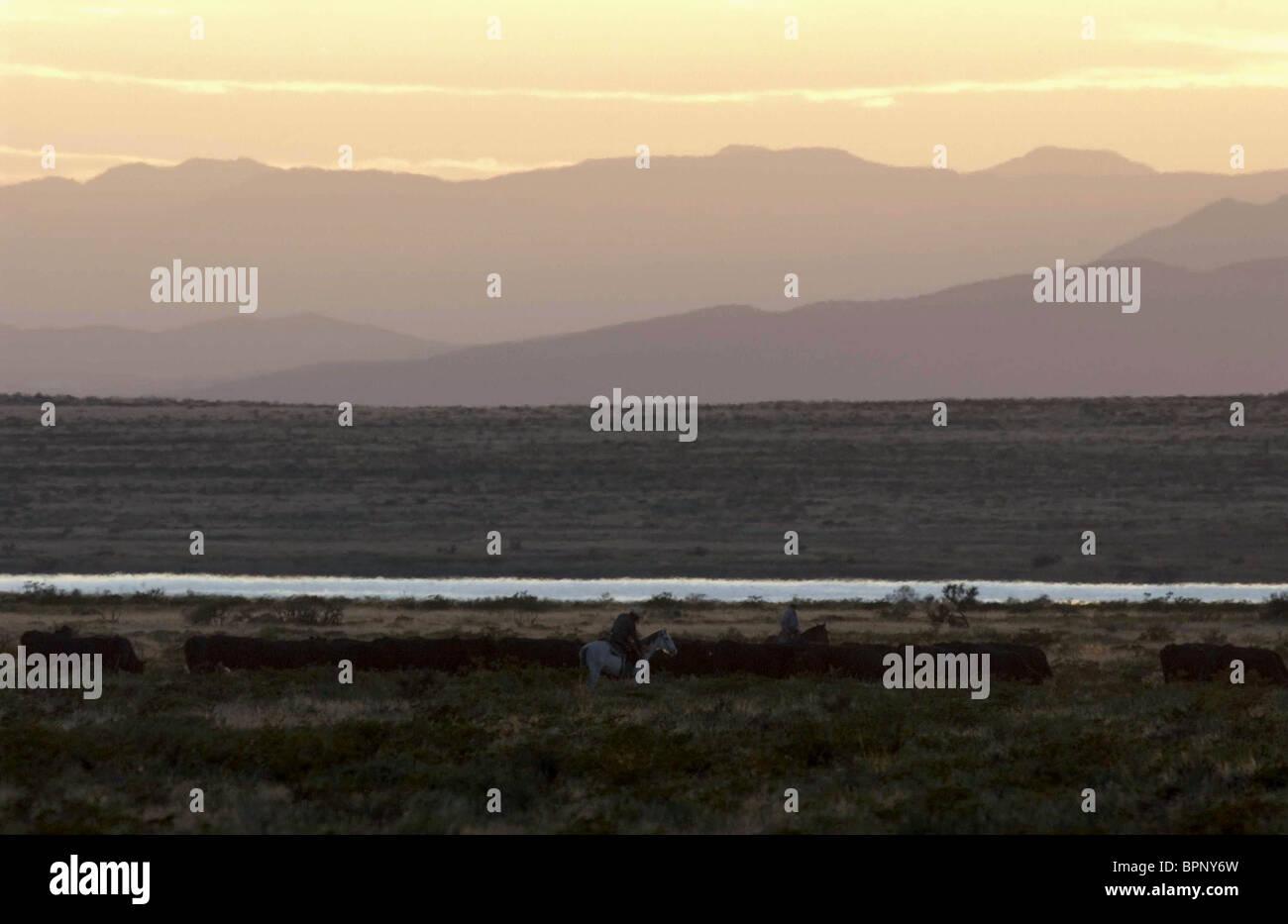 MEXICAN LANDSCAPE THE THREE BURIALS OF MELQUIADES ESTRADA; LOS TRES ENTIERROS DE MELQUIADES ESTRADA (2005) - Stock Image