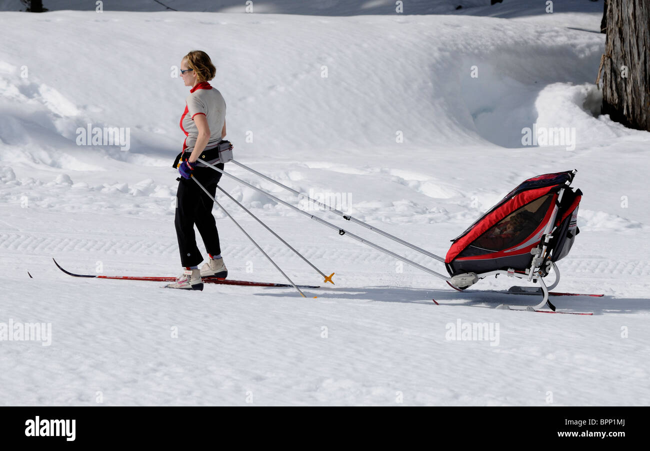 Mother Skiing And Pulling Her Child In A Baby Carrier